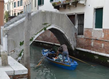 Rowing under the bridge